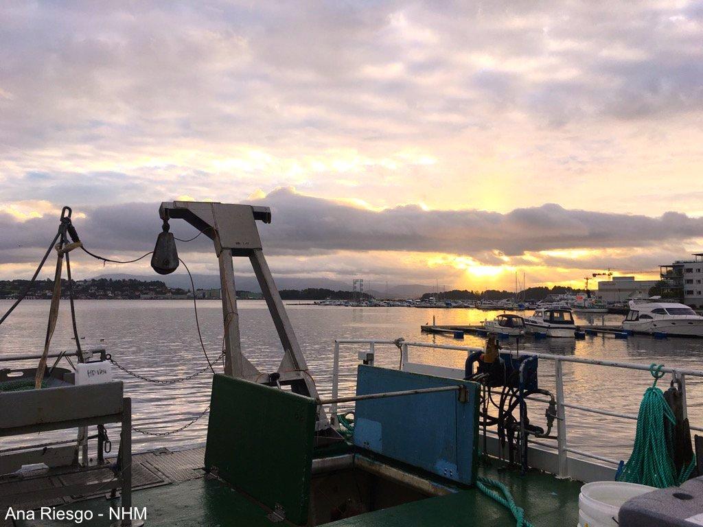 Norwegian sunset after sampling deep-sea Porifera for the EU project SponGES