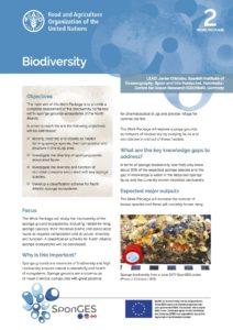 FAO, Factsheet, WP2, SponGES