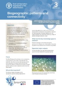FAO, Factsheet, WP3, SponGES