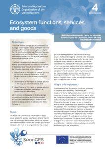 FAO, Factsheet, WP4, SponGES