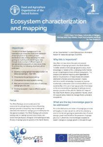FAO, Factsheet, WP1, SponGES