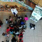 SponGES touring exhibition Gijón