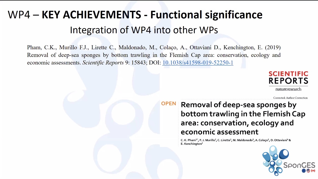 Slide from SponGES WP4 at final meeting
